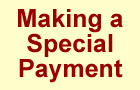 Special Payment