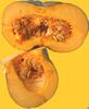 Jamaican Pumpkin